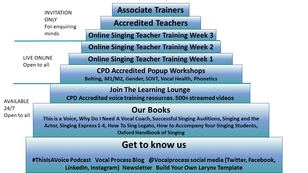 The Vocal Process Ziggurat - a stepped pyramid diagram showing different levels of our training for singing teachers